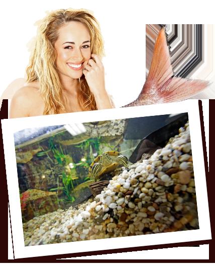Zoo Kaup in Neubeckum – Aquaristik