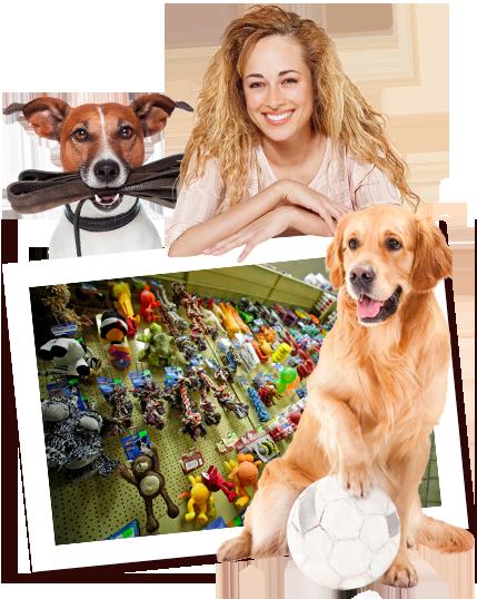 Zoo Kaup in Neubeckum – Hund