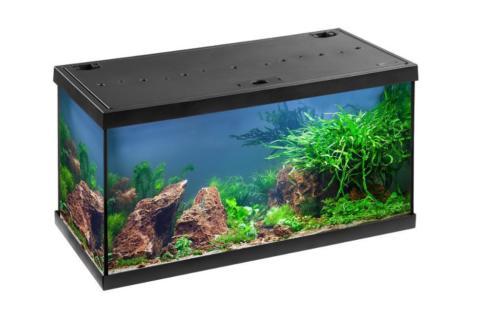 Aquarium Eheim Aquastar 54l LED Image